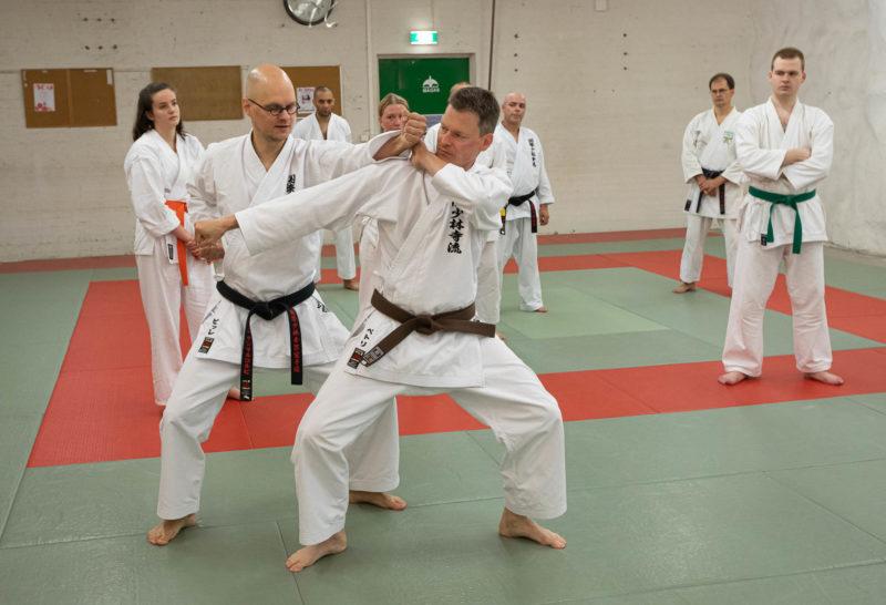 Karaten peruskurssit alkavat 18.1.2020